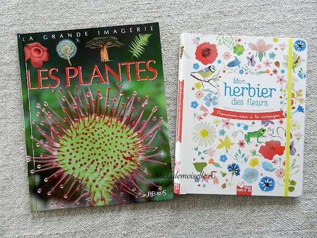 || Nos projets d'activités pour étudier la botanique : La grande imagerie : les plantes, Mon herbier des fleurs