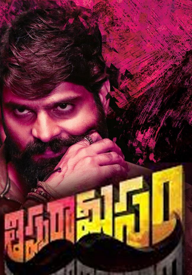 Thipparaa Meesam (2019) Telugu 720p WEB-DL 1.4GB ESubs