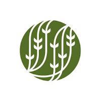 logo palais des thés louvain la neuve