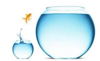 Girisimci olmak için izlenecek yollar  risk alın
