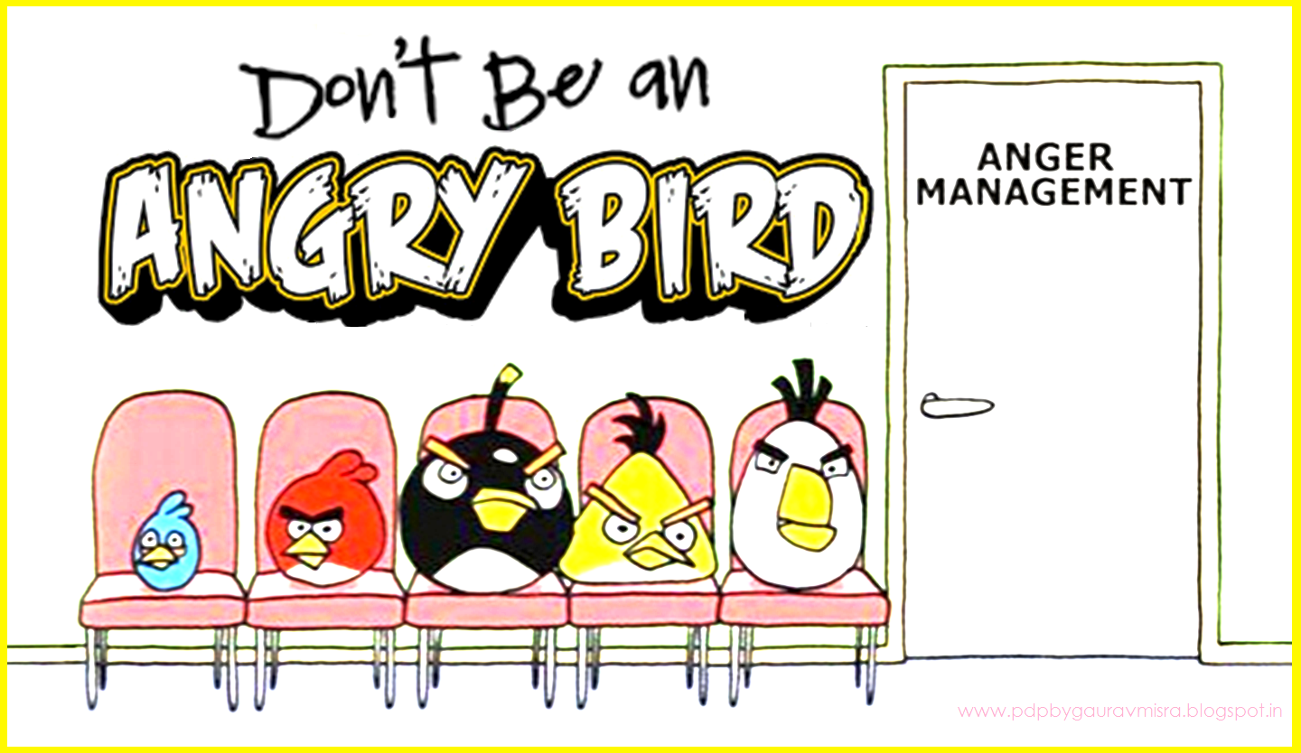 Pdp By Gaurav Misra Don T Be An Angry Bird