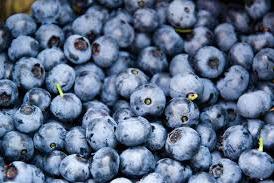 Rahasia Manfaat Blueberry Untuk Kesehatan