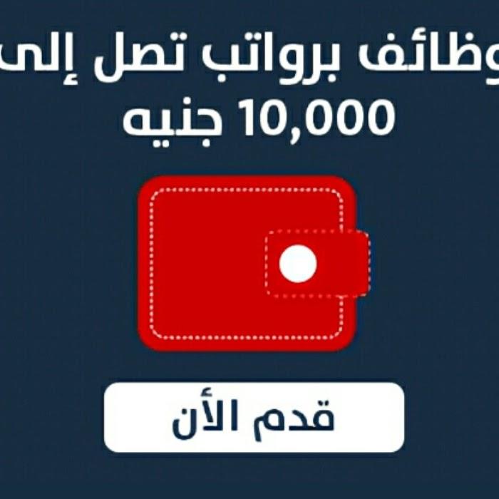 وظائف خالية وفرص عمل بمحافظات القاهرة - الجيزة - الاسكندرية تعرف على الشروط والتقديم الان