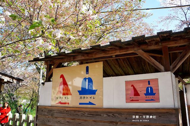【2013關西の春】京都。桜の平野神社   駱駝商旅隊