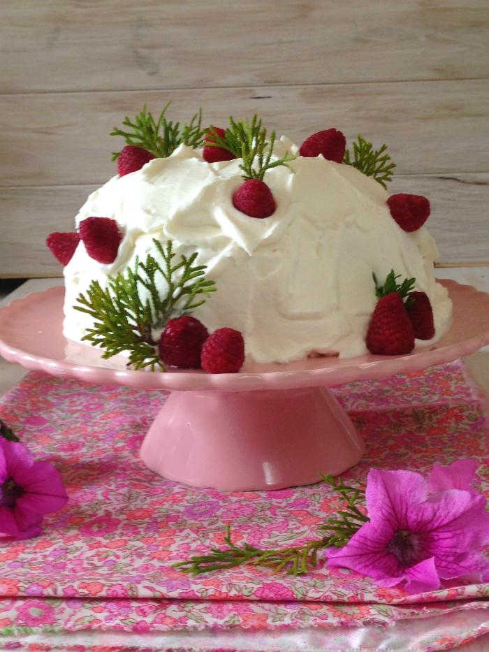 trifle, fresas, trifle-helado, yogur
