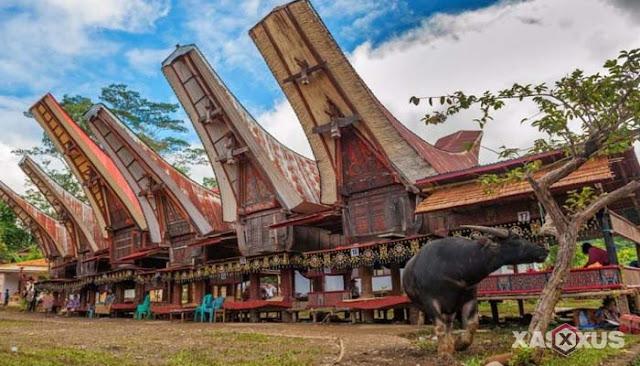 35 Rumah Adat Indonesia Beserta Gambar, Nama, Provinsi, Lengkap Dengan Penjelasannya