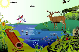 Komponen Ekosistem