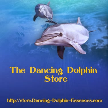 Takara's Dancing Dolphin Store with all her products, programs, private sessions, and more