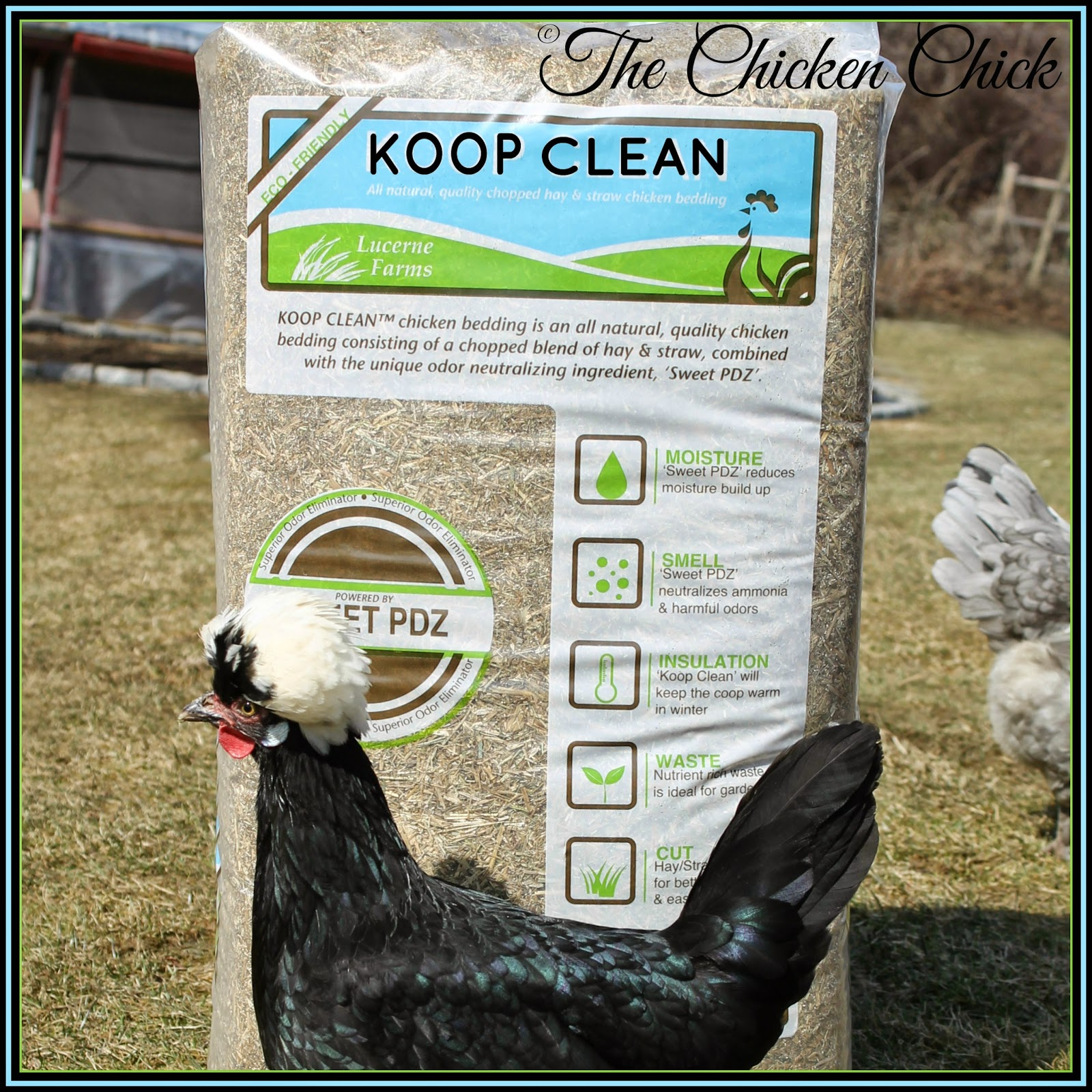 Koop Clean is an all natural chicken bedding comprised of chopped hay, chopped straw and a unique, odor-neutralizing ingredient  called Sweet PDZ. Contains no chemicals, dyes or perfumes.