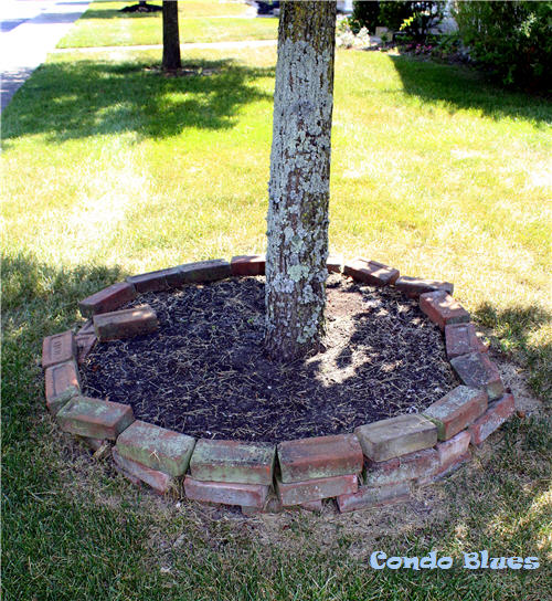 Brick Around Shed With Mulch And Flowers: Condo Blues: How To Make A Brick Tree Ring On Uneven Ground