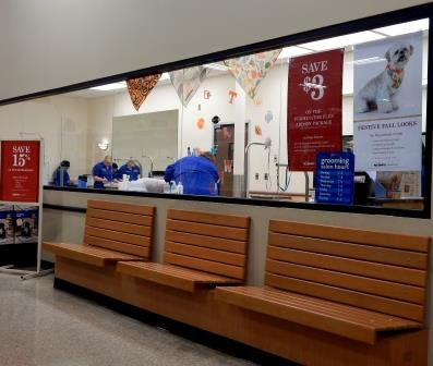 Benched in front of grooming salon windows at PetSmart in Owensboro Ky