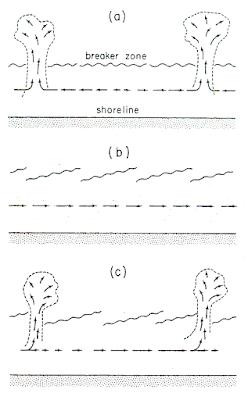 Arus-arus dengan Sebab Khusus : Arus Sepanjang Pantai (Longshore Current), Arus Rip (Rip Current), Arus Turbid (Turbidity Current) dan Arus Pasang Surut