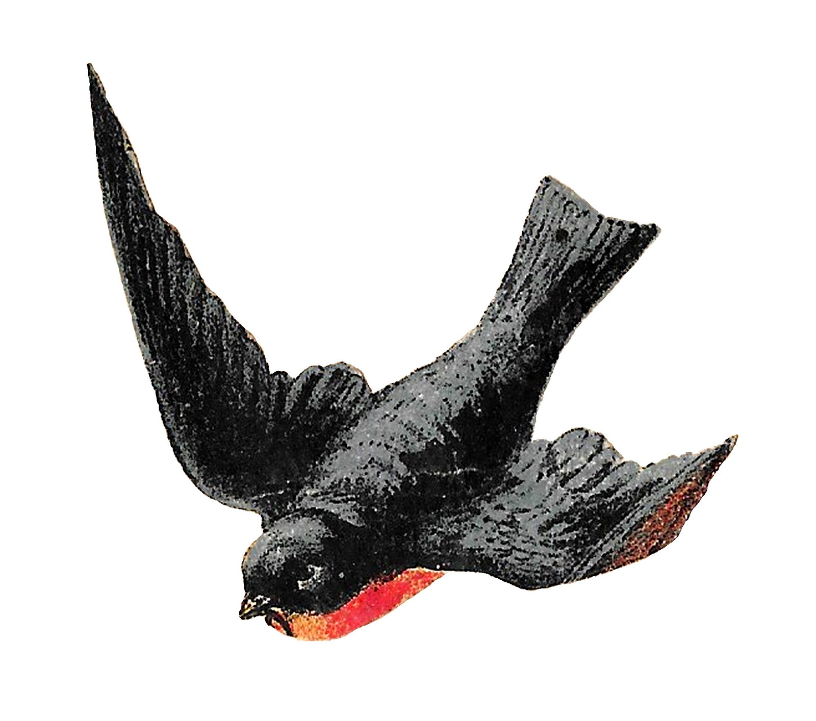 Antique Images: Stock Antique Flying Birds Clipart Animal ...