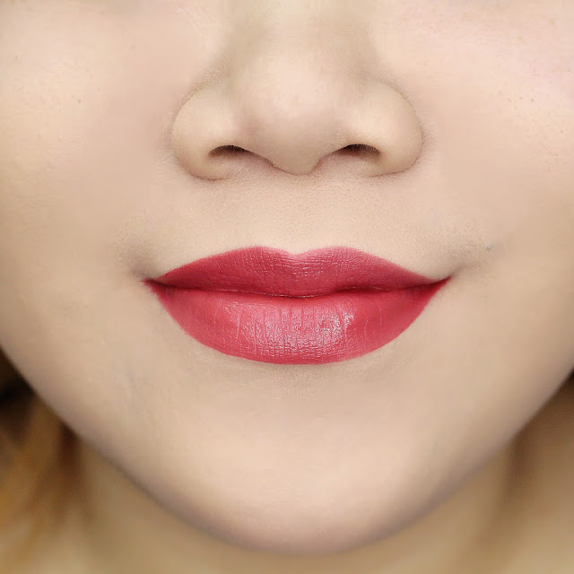 Lips Swatch Red Dusty Pink Matte