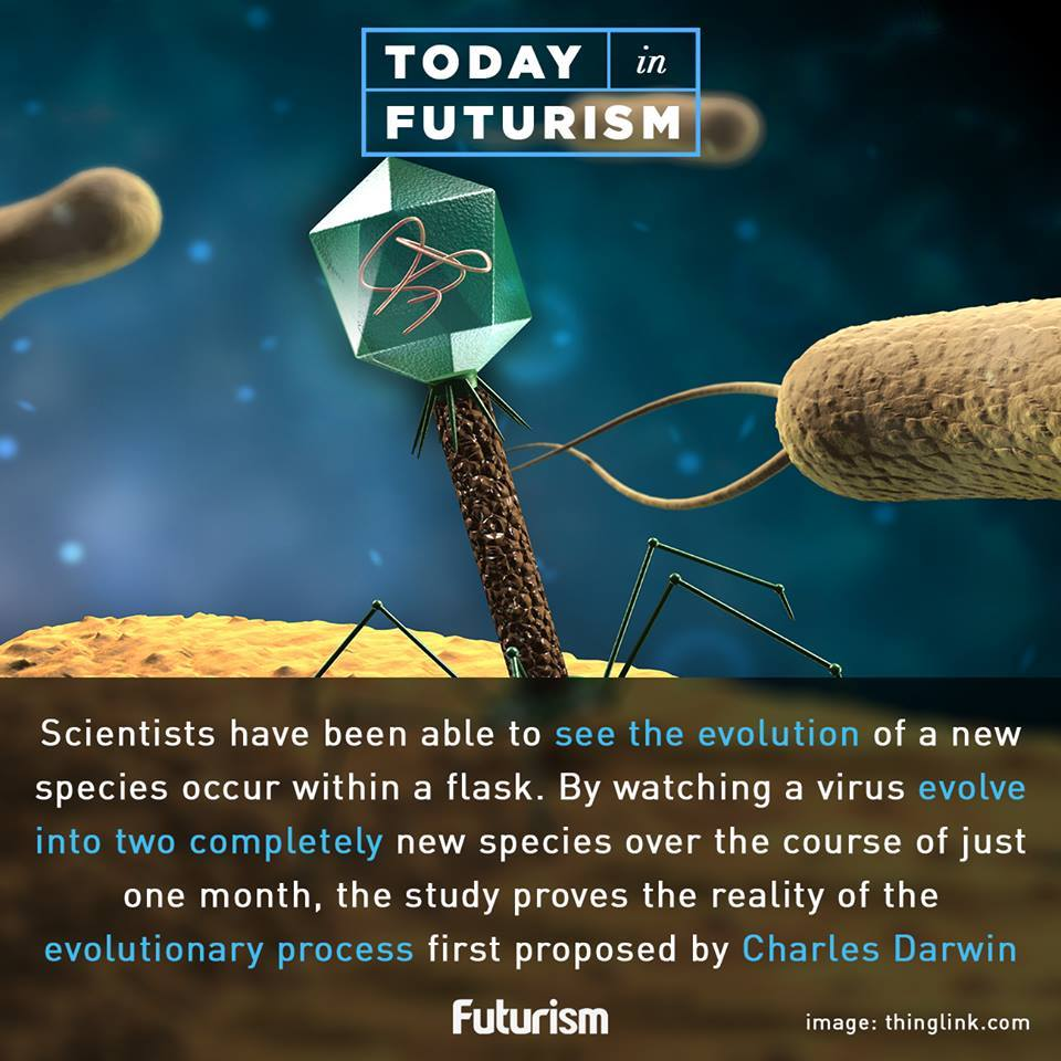 What idea did hardy and weinberg disprove - To Disprove The Theory Of Evolution A Person Would Have To Deny That Viruses And Bacteria Can And Do Mutate