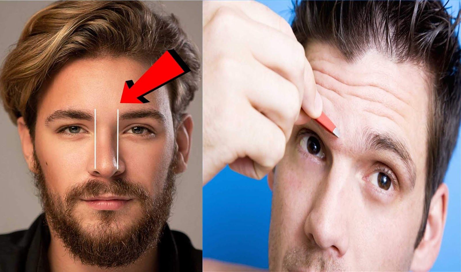 How to SHAPE your EYEBROWS (A Complete Guide ...