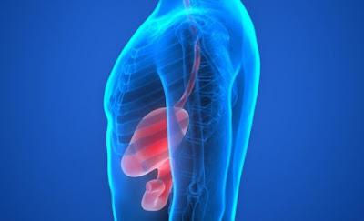 Come inibire proliferazione cellule cancro gastrico umano