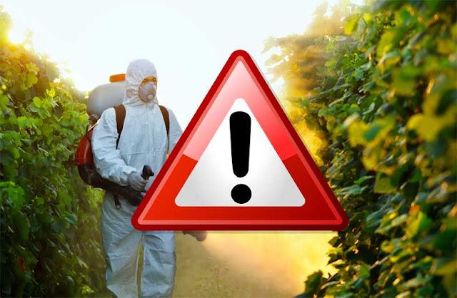 Αργολιδα: Απαγόρευση χρήσης εντομοκτόνου στα ελαιόδεντρα που περιέχουν τη δραστική ουσία chlorpyrifos