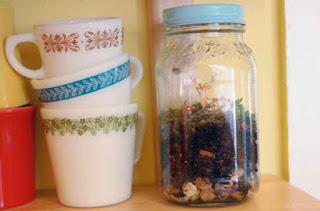 Guide: Mason Jar Terrarium