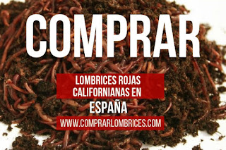 Comprar Lombrices Rojas Californianas
