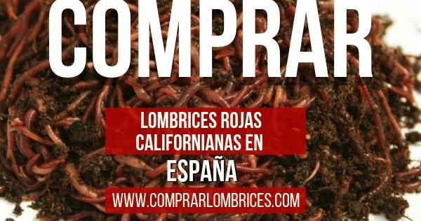 lombrices rojas californianas comprar
