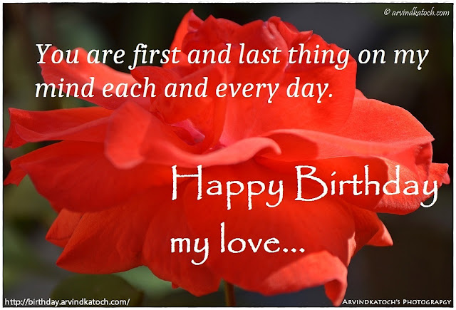 Red Rose, HD, Birthday Card, first, last, thing, mind, download