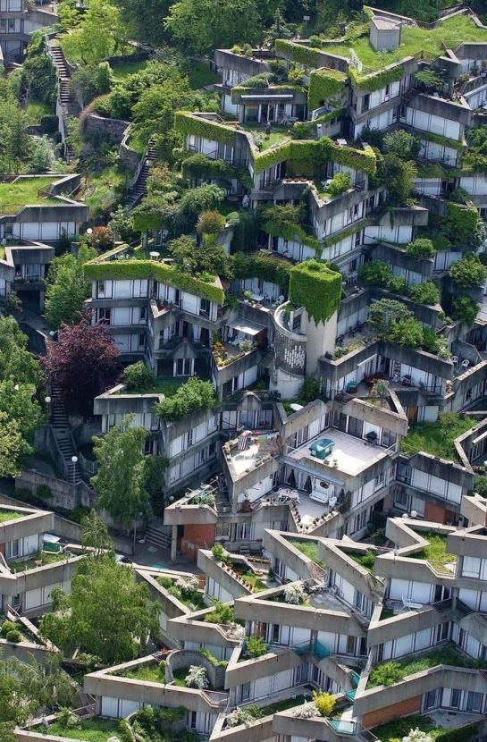 curiosidades del mundo techos verdes y apartamentos bot nicos. Black Bedroom Furniture Sets. Home Design Ideas