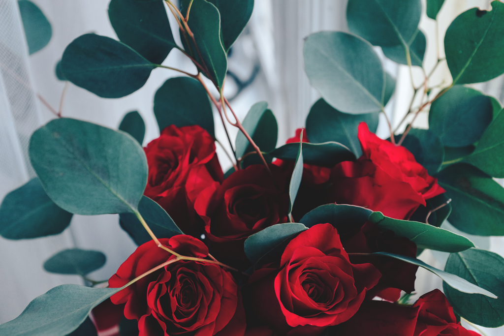 Red Roses for Valentine's Day - Mini Penny Blog