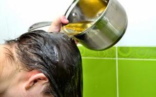 Minyak Zaitun untuk Kesehatan Rambut