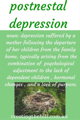 Postnestal Depression - just like Postnatal Depression but caused by children leaving rather than arriving