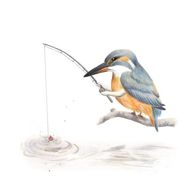 ilustración de pájaros, martín pescador, aves de la albufera, alcedo atthis, ilustración de aves, aves mediterráneas, aves acuáticas, aves de la península ibérica, aves españolas, Inktober, Inktober 2017,