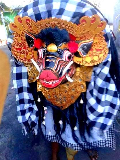 Barong Bangkung, Pig dancing around the village
