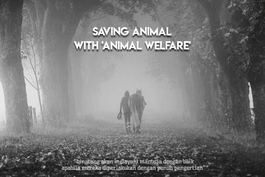Saving Animal with Animal Welfare - Review Buku