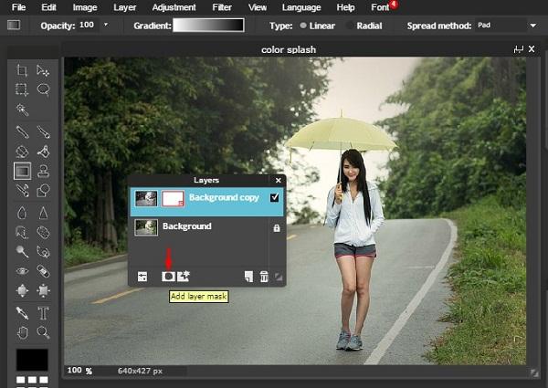 Edit foto Color Splash  Editor Online