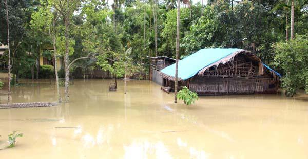 North East Floods Toll Rises To 17: Over 4.25 Lakh People Displaced In Assam; 213 Relief Camps Set Up In Five Districts