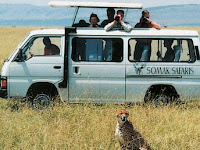 3 Places to Experience on Your First Safari