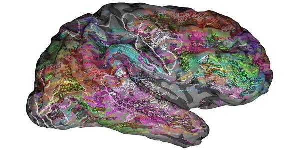 Χαρτογράφησαν τις λέξεις στον εγκέφαλο!