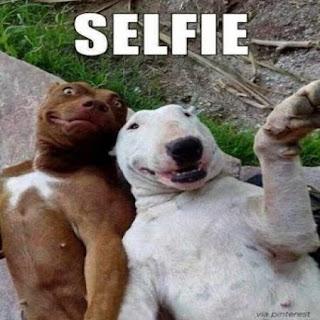Fotos con frases graciosas