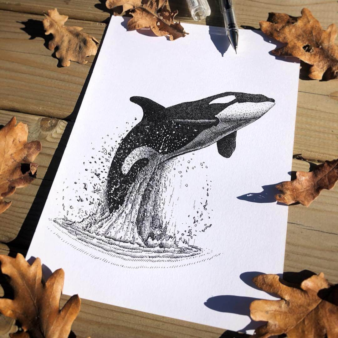 02-Killer-Whale-Orca-Gaspar-Animal-Stippling-and-Cross-Hatching-B&W-Drawings-www-designstack-co