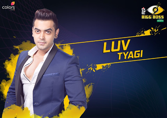 Luv Tyagi (Bigg Boss 11 Contestant)