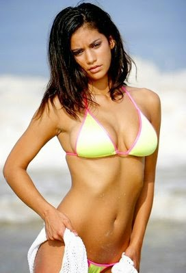 Girls Without Clothes Wallpaper Hollywood Actresses Hot In Hot Bikini Summer Of Happiness