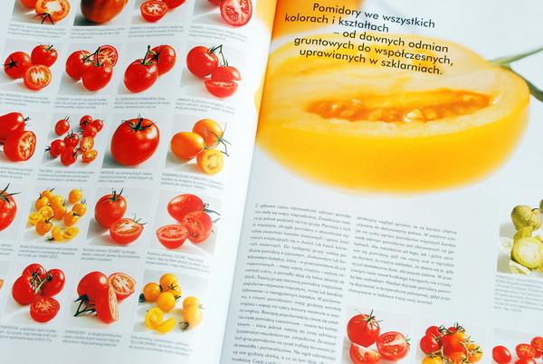 Wnętrze książki, pomidory