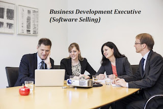 Business Development Executive (Software Selling)