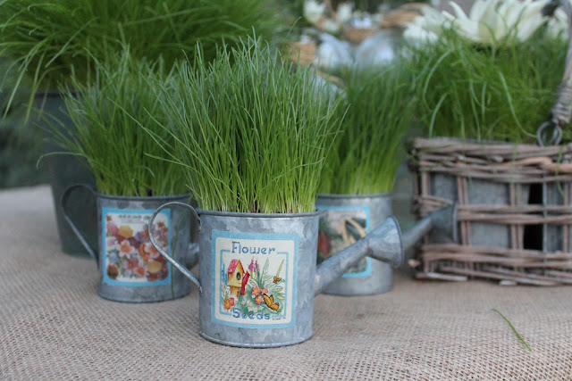 grow grass for party decor