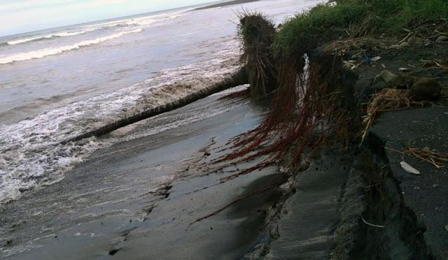 Abrasi Pantai Tegalbanteng Desa Tegalrejo