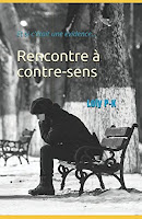http://leslecturesdeladiablotine.blogspot.fr/2017/09/rencontre-contre-sens-de-loly-p-k.html