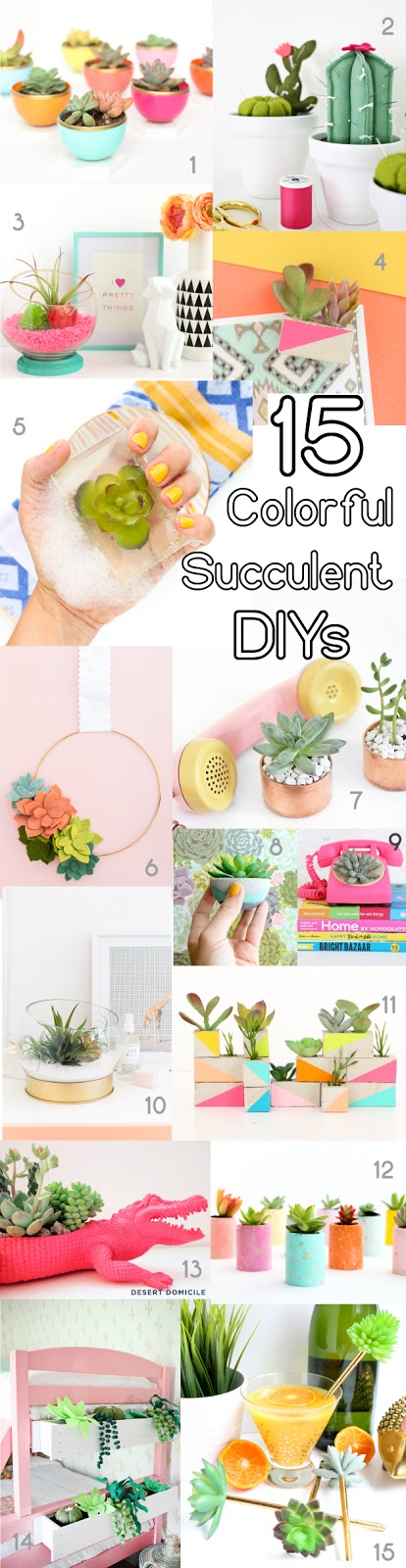 15 of the best colorful DIY Succulent Projects and Crafts