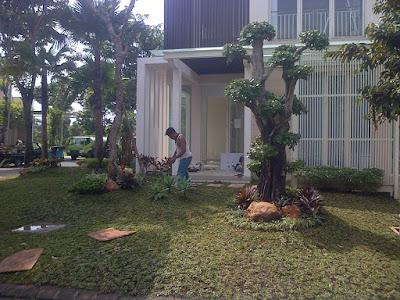 Contoh-desain-taman-rumah