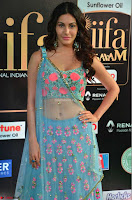 Amyra Dastur in Flower Print Choli Transparent Chunni at IIFA Utsavam Awards 07.JPG