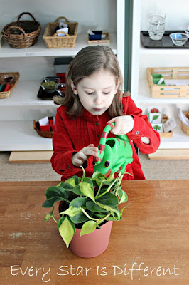 Watering a plant activity for kids.